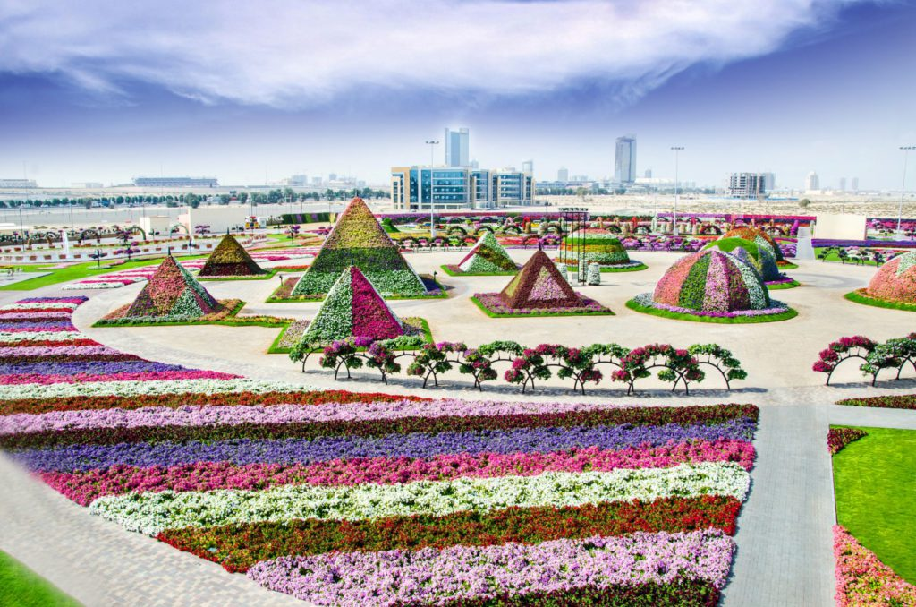 flower-garden-dubai-miracle